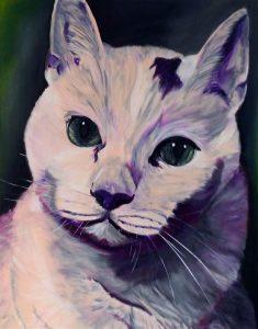 T4-2017-Katze